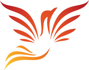 Phoenix - new - on white background 5 inches wide or bigger